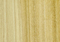 http://www.hardwood-suppliers.co.uk/wp-content/themes/global/images/poplar_wood_big.jpg